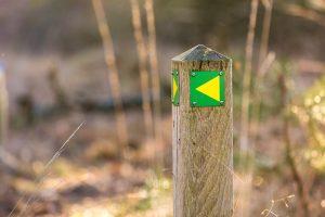 paaltje met markering wandelknooppunt. Bron VisitBrabant.nl